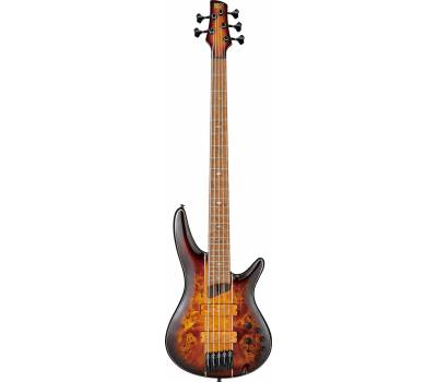 Купить IBANEZ SR5PBLTD DEL Бас-гитара онлайн