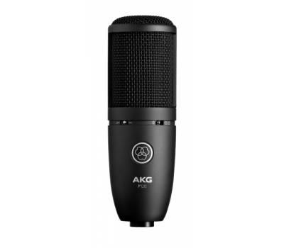 Купить AKG Perception P120 Микрофон онлайн