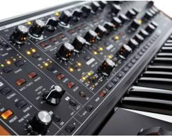 MOOG SUBSEQUENT 37 Синтезатор аналоговый